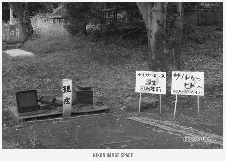 地球の道(TZ403091) posted by (C)うら