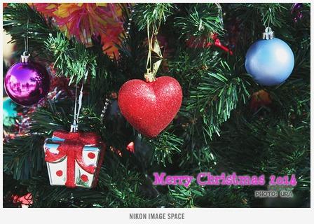 クリスマスツリー posted by (C)うら