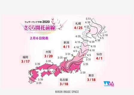 桜の開花予想(2)(XXX)