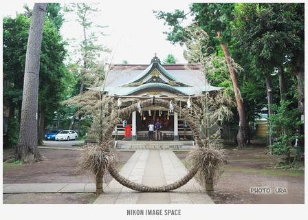 荻窪・天沼八幡神社 posted by (C)うら