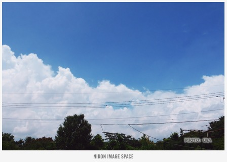 夏空(TZ406062) posted by (C)うら
