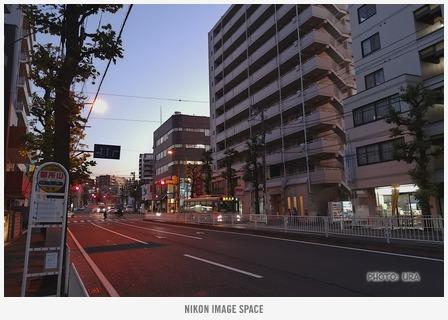 夕暮れ(NL300248) posted by (C)うら